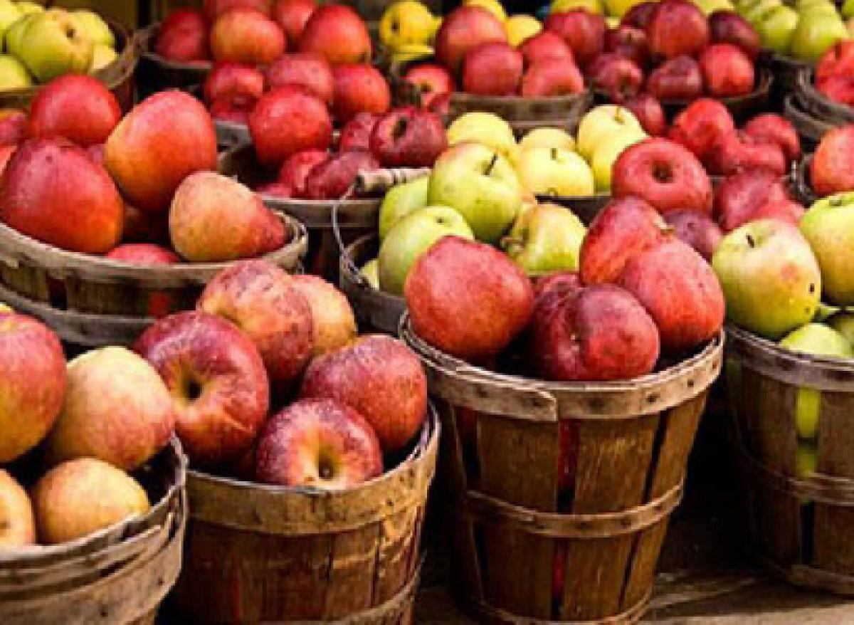 Himachal fruit economy may be hot by dry winter