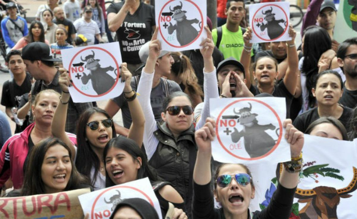 Bullfighting Returns To Colombias Capital Amid Protests
