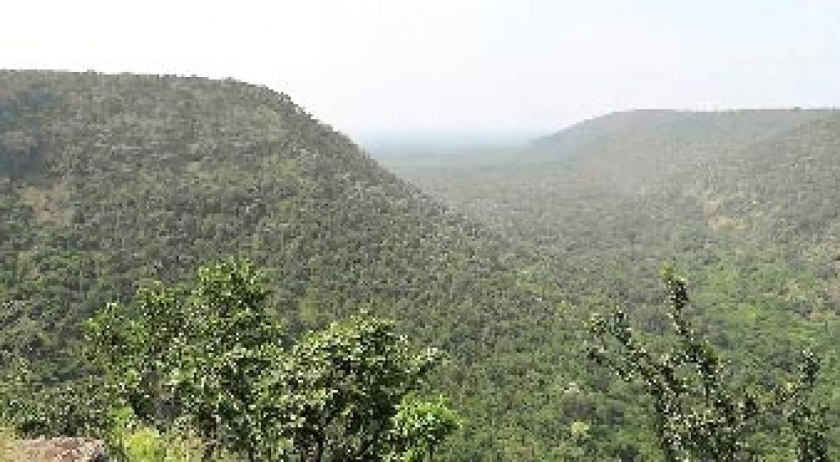 CM to inaugurate eco-tourism cottages