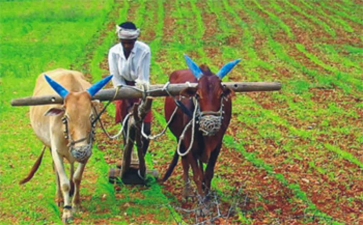 More investment into agriculture R&D sought