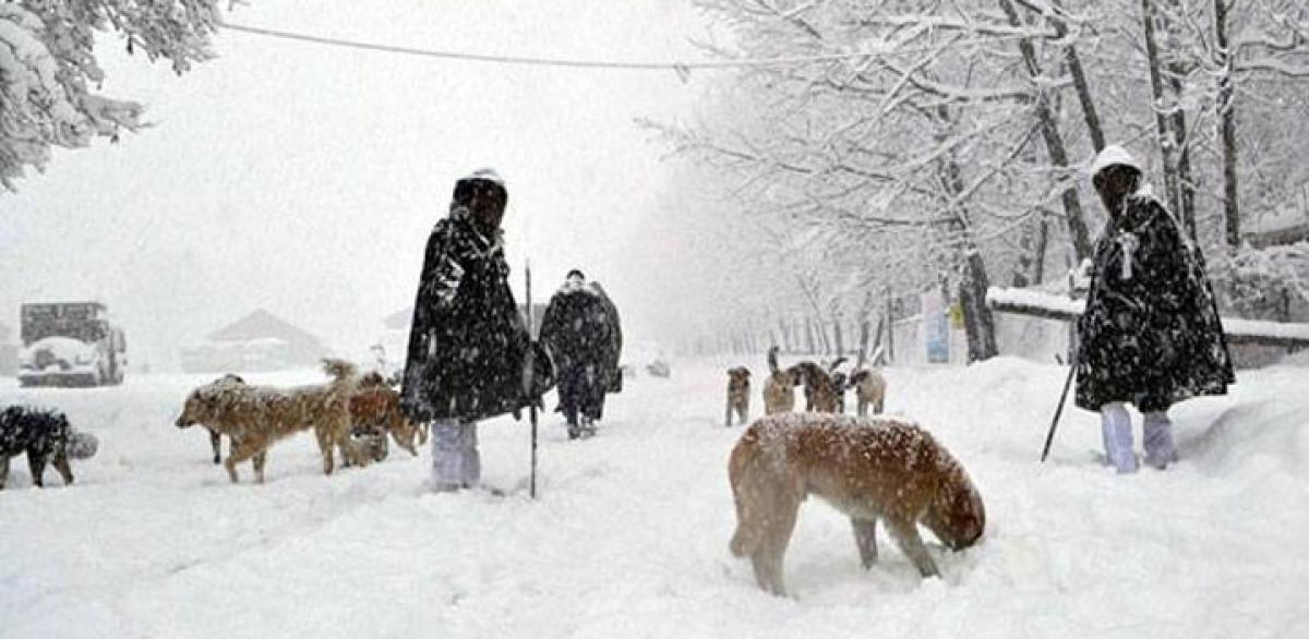 Kashmir feels the chill