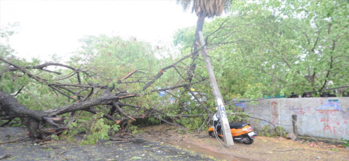 Rain wreaks havoc in Nirmal