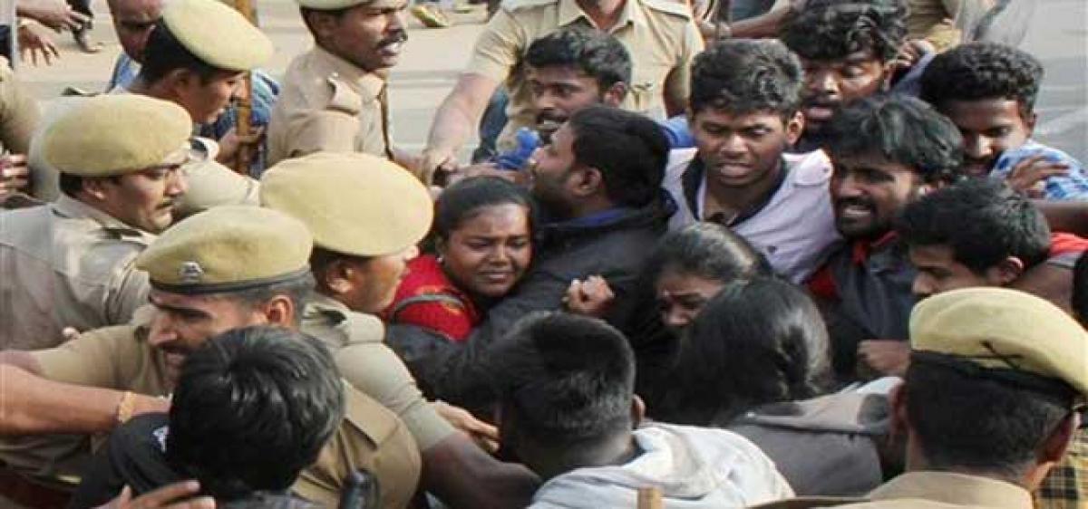 TN Assembly passes Bill on Jallikattu