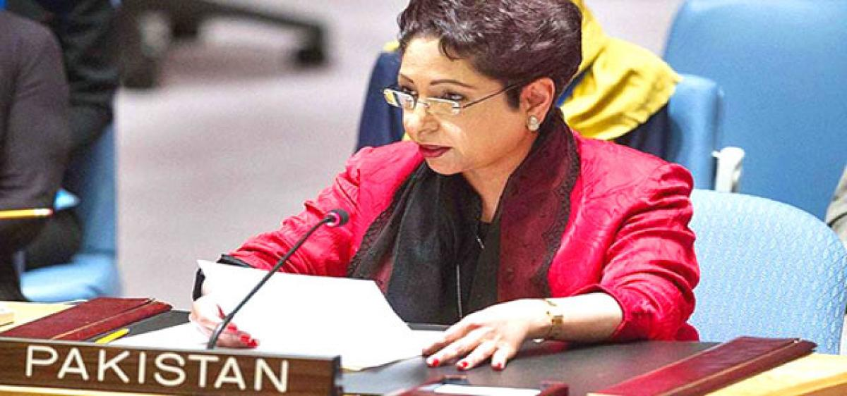 Pak hands over dossier on India's interference to UN