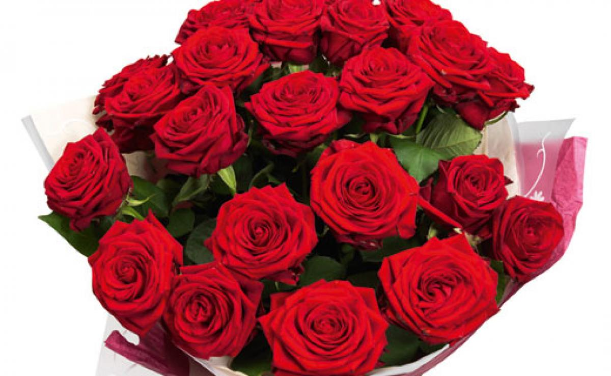 Red Roses May Be Passe This Valentines Day: Survey