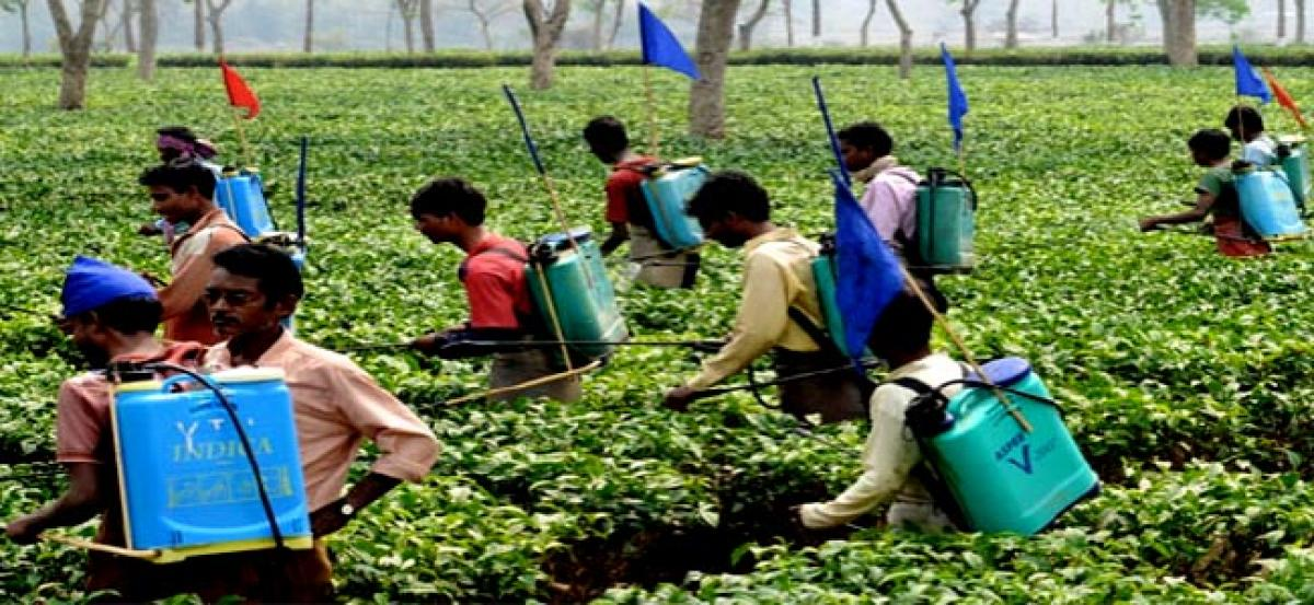 India Pesticides market is expected to reach INR 484.0 billion by FY'2020: Ken Research