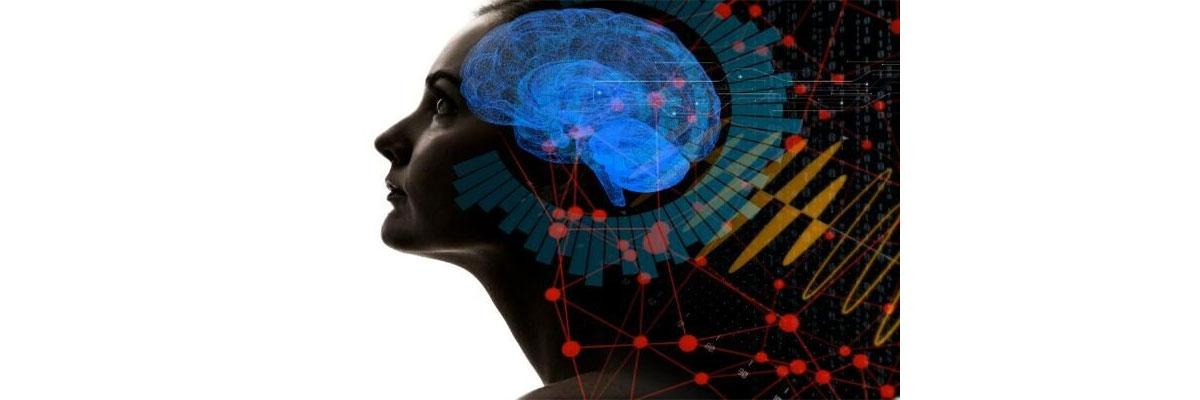 Human brain responds to aggressive voices more quickly