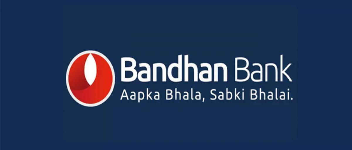 RBI bars Bandhan Bank opening new branches