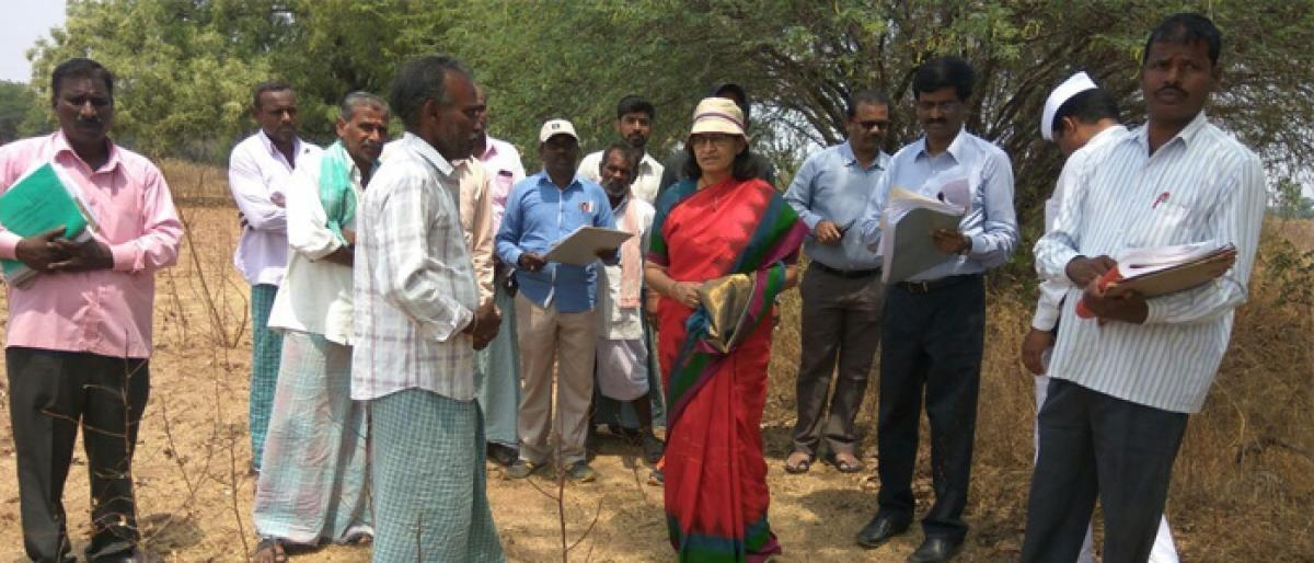 Bhongir Collector inspects farmlands in Dudhivenkatapuram