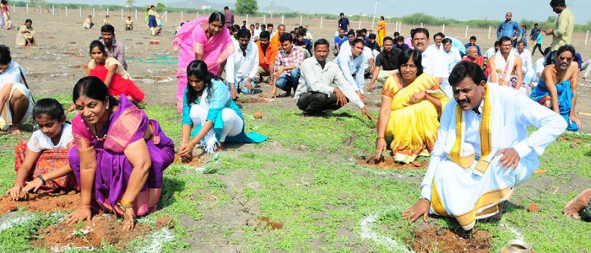 Rajanna temple takes up Bilva plantation