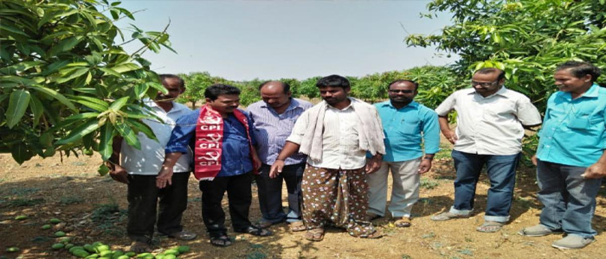 Demand for compensation to rain-hit farmers