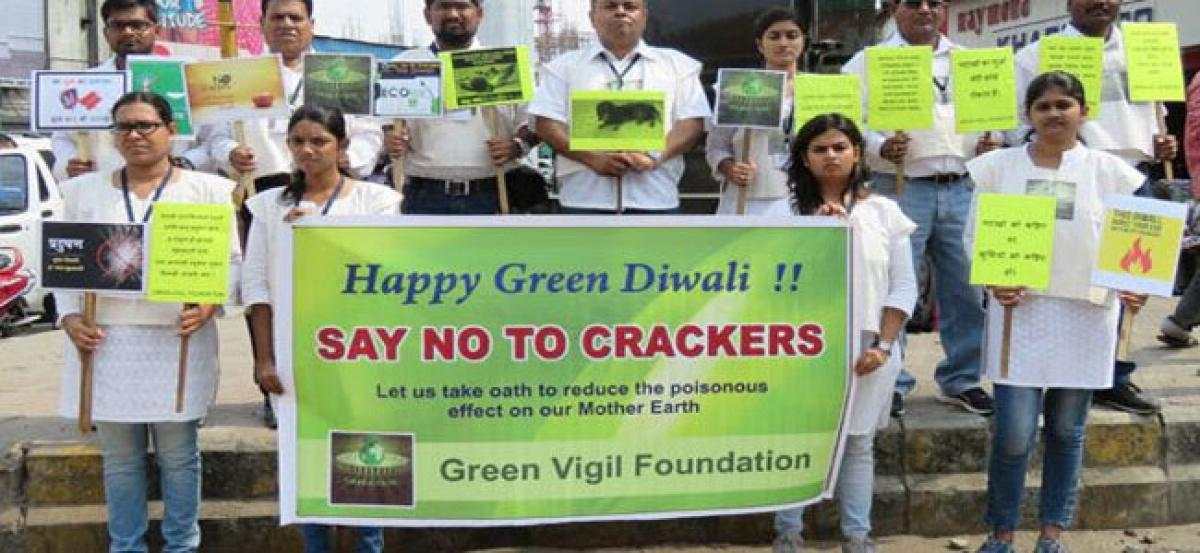 Activists bat for mass awareness and access to green crackers
