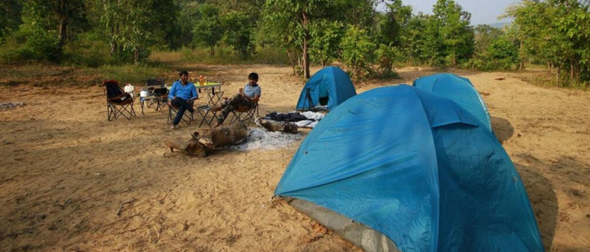 Go camping to unwind in nature