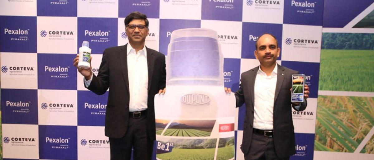 Corteva launches new pesticide for paddy