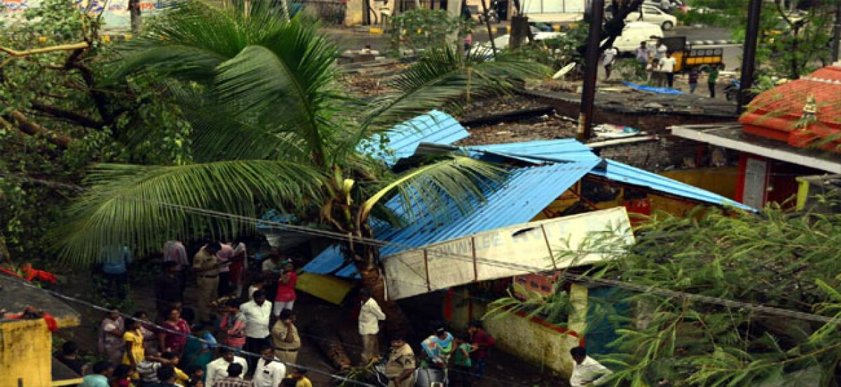 Uprooted peepal tree damages two houses