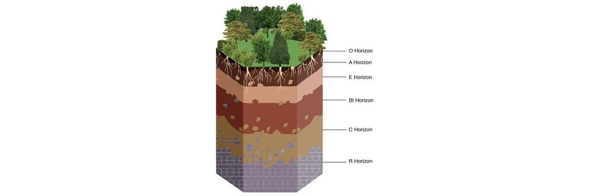 Learn about soil layers