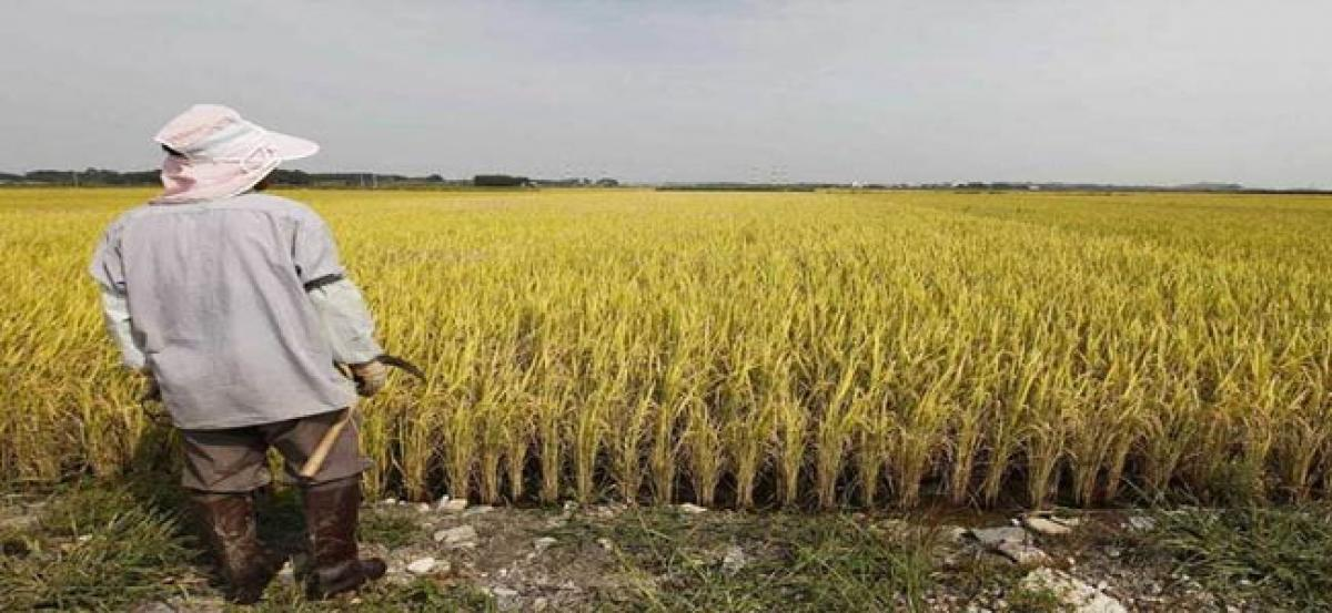 Congress demands government to provide Rs 15k per acre for farmers