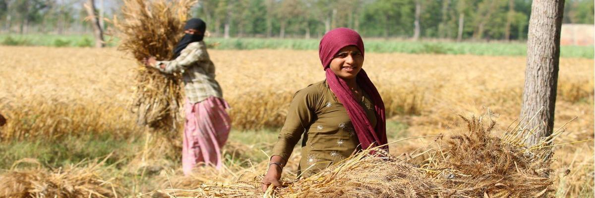It's time to shift farmers economic burden