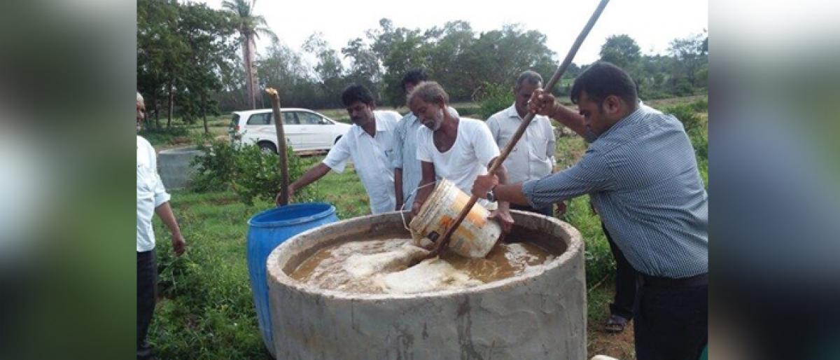 Trade fair showcases Organic Farming Method in a big way at Vijayawada