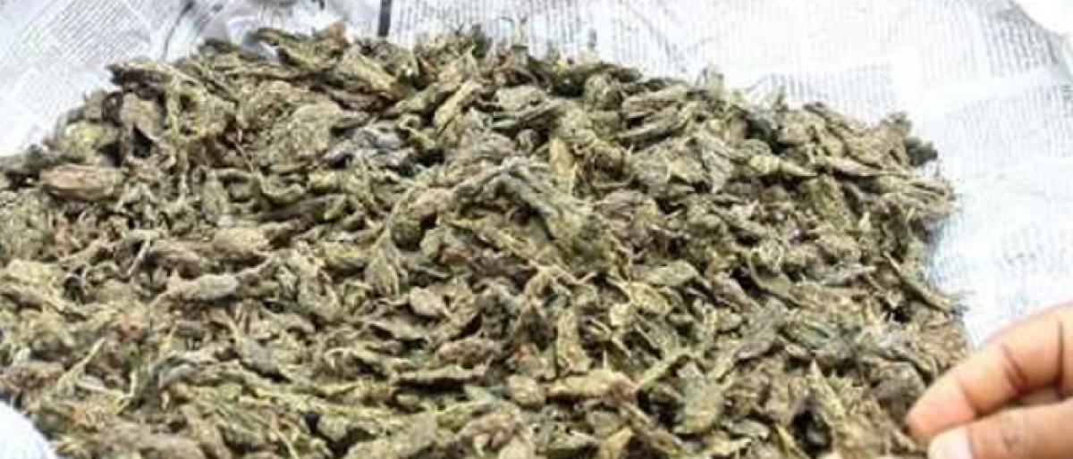 Staff of daily threatened over news about ganja seizure