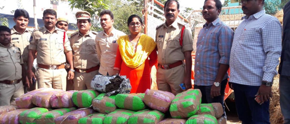 Ganja worth 7 lakh seized