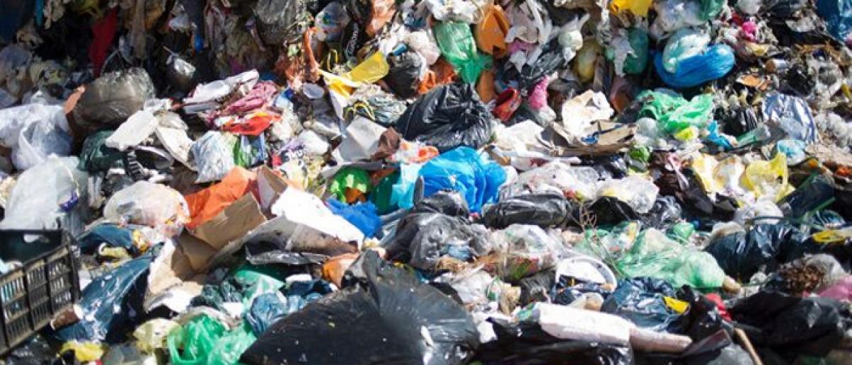 Vijayawada city produces nearly 600 tonnes of garbage