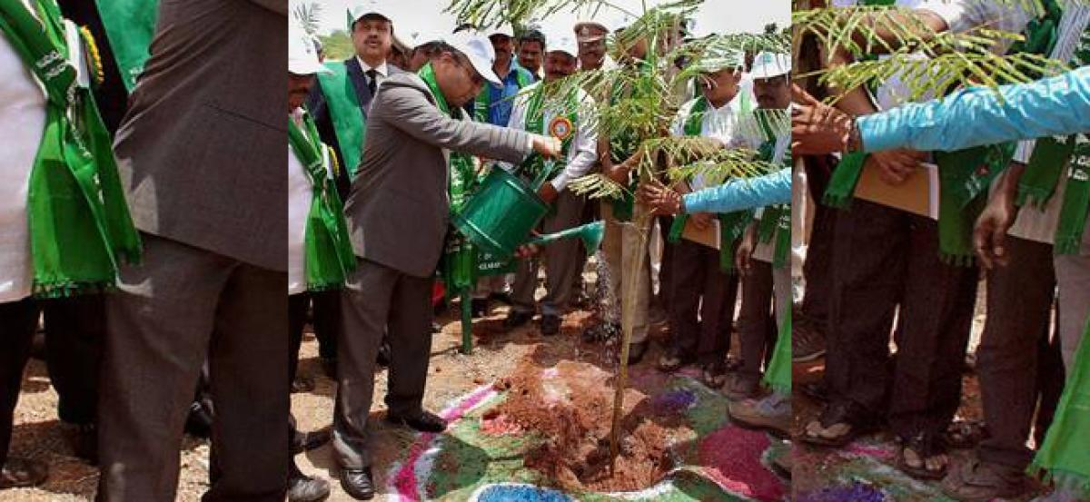 Central Govt staff to participate in Haritha Haram programme