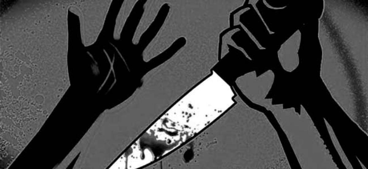 Honour killing in Austria: Afghan stabs teenage sister 28 times