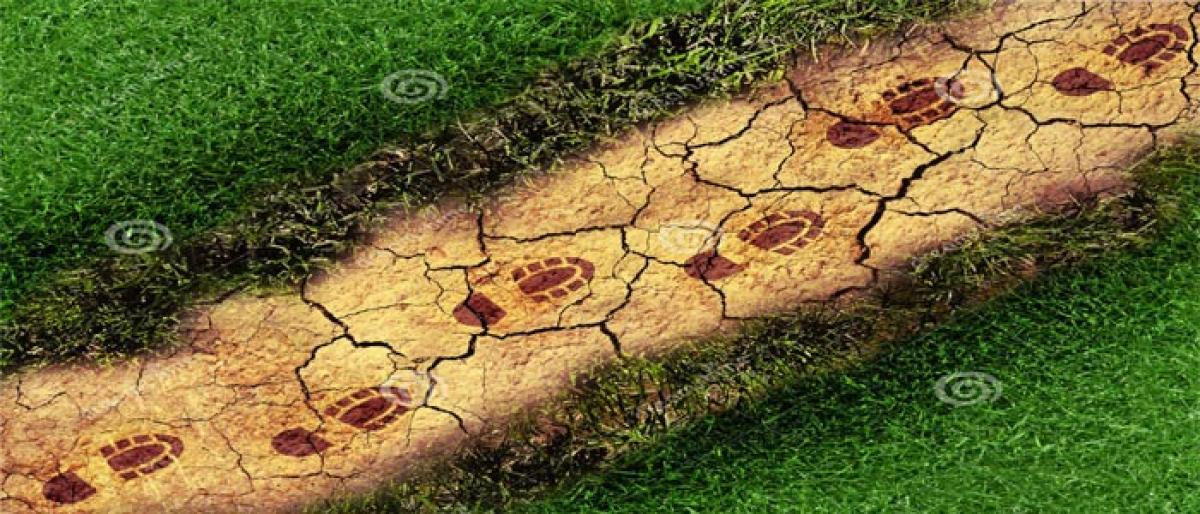 Human impact on ecology and environment