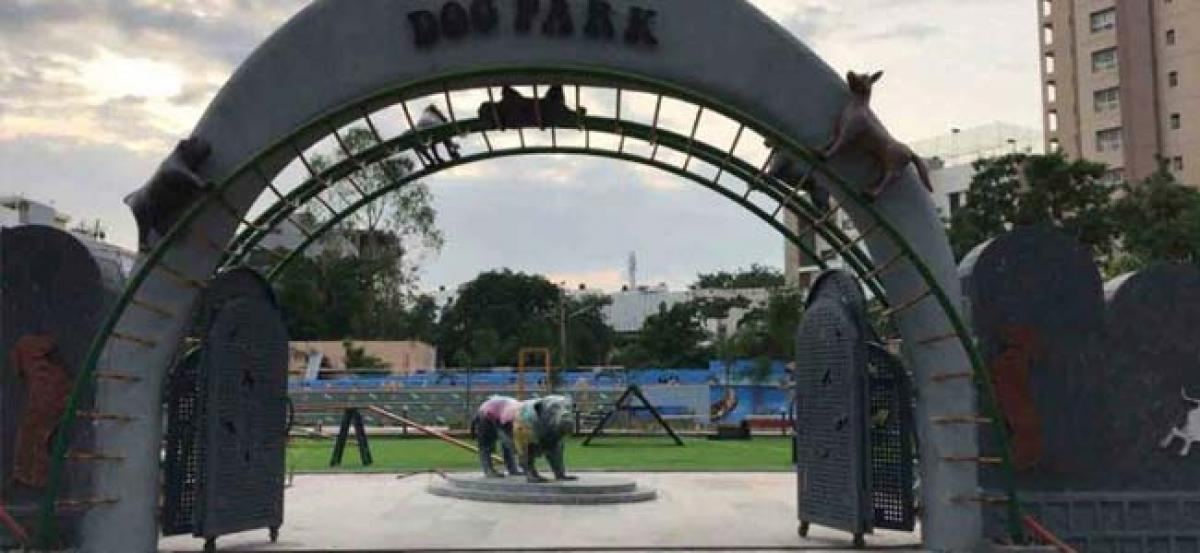 Indias first ever Dog Park to be launched in Hyderabad