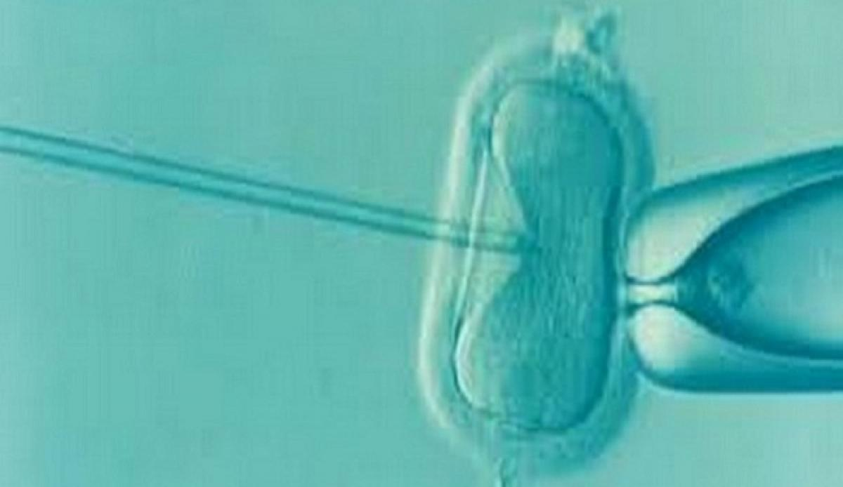 Children born through assisted reproductive technologies, vulnerable to hypertension