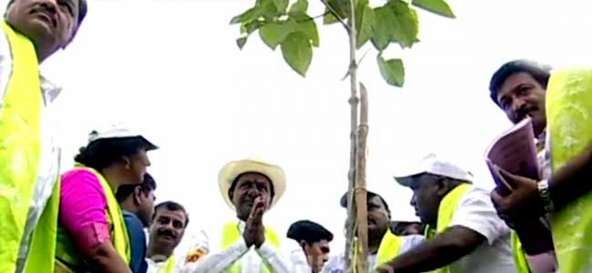 Fourth phase of Haritha Haram launched in Gajwel