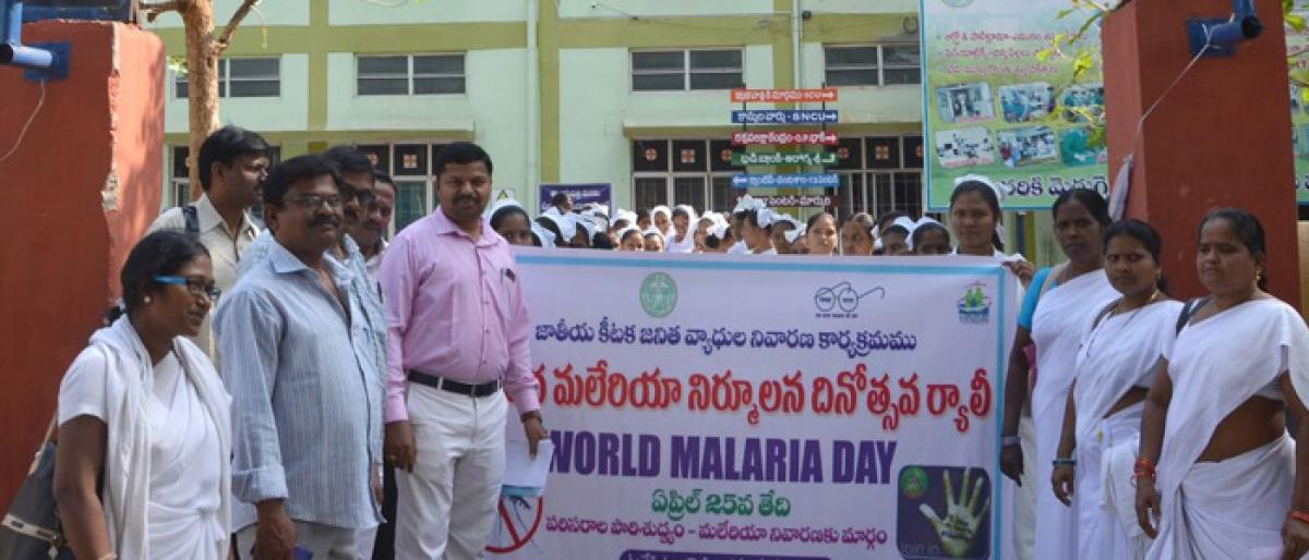 Rallies, meetings mark World Malaria Day
