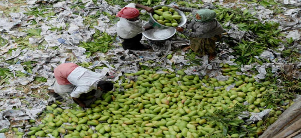 Karnataka mangoes ruling Hyderabad streets