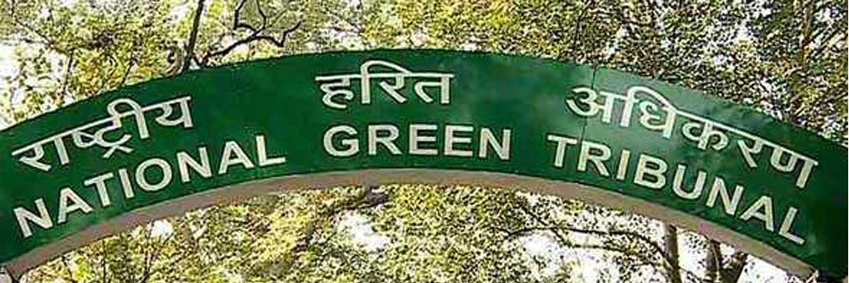 Social functions under NGT's lens