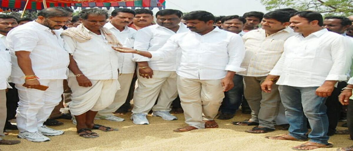 IKP paddy procurement centres opened