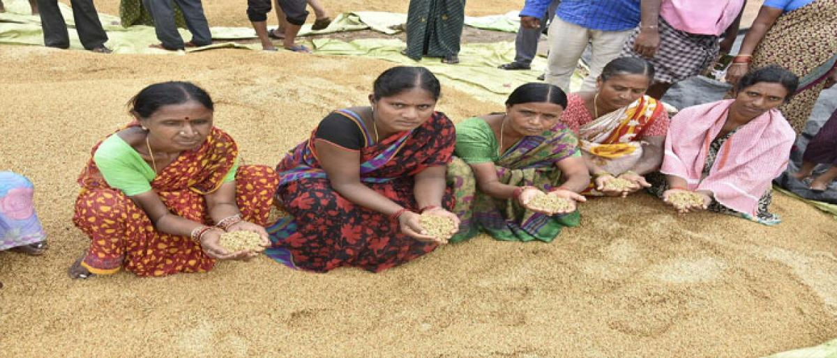 Unseasonal rains cause widespread crop loss