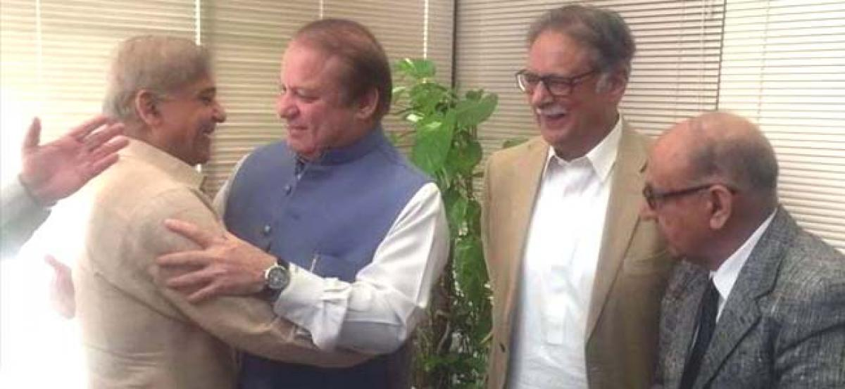Now Imran Khans austerity drive targets Nawaz Sharifs buffaloes