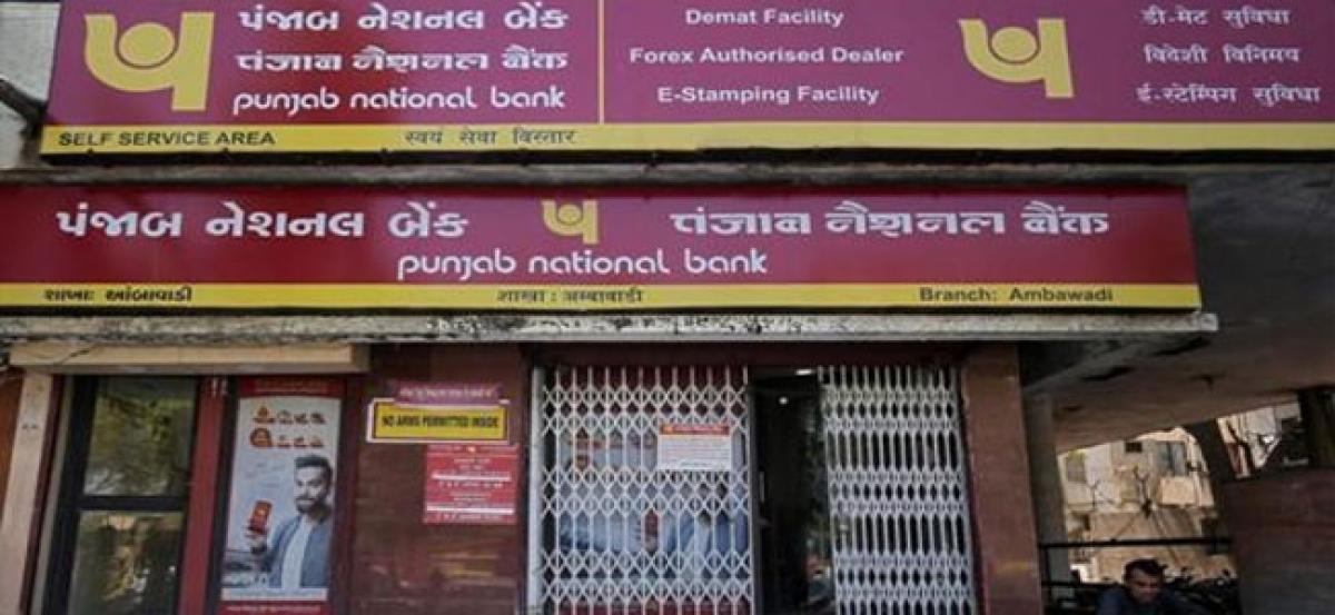 Big wilful defaulters owe PNB Rs 15,172 cr
