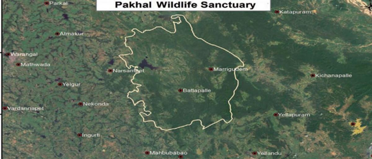 Important bird areas under threat in AP, Telangana
