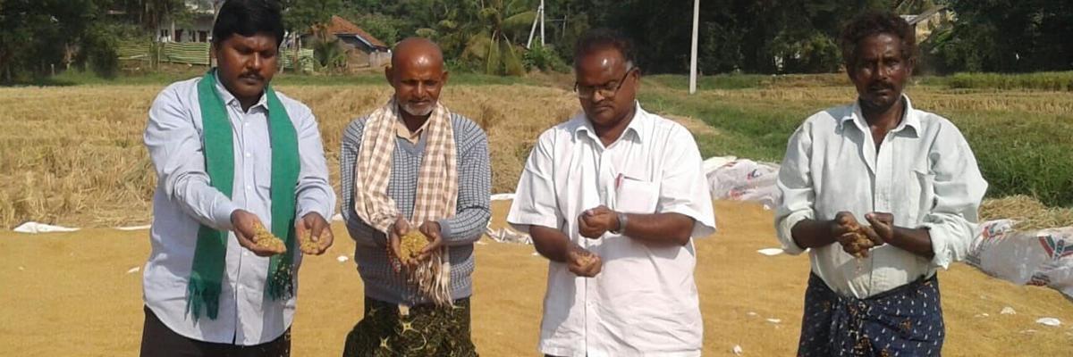 Bonus of Rs 500 per quintal paddy demanded