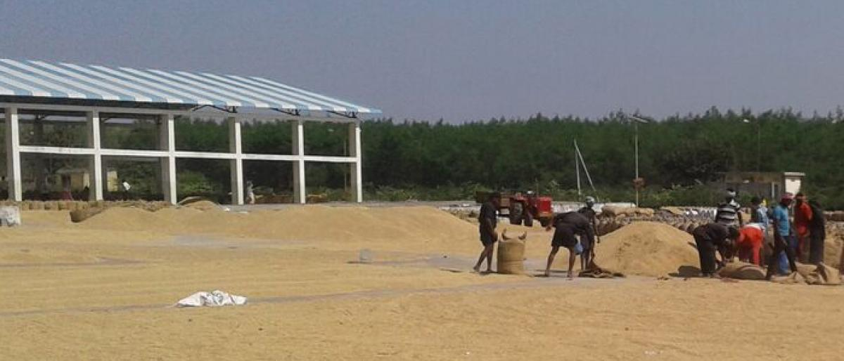 Farmers prefer to sell paddy at drying yards
