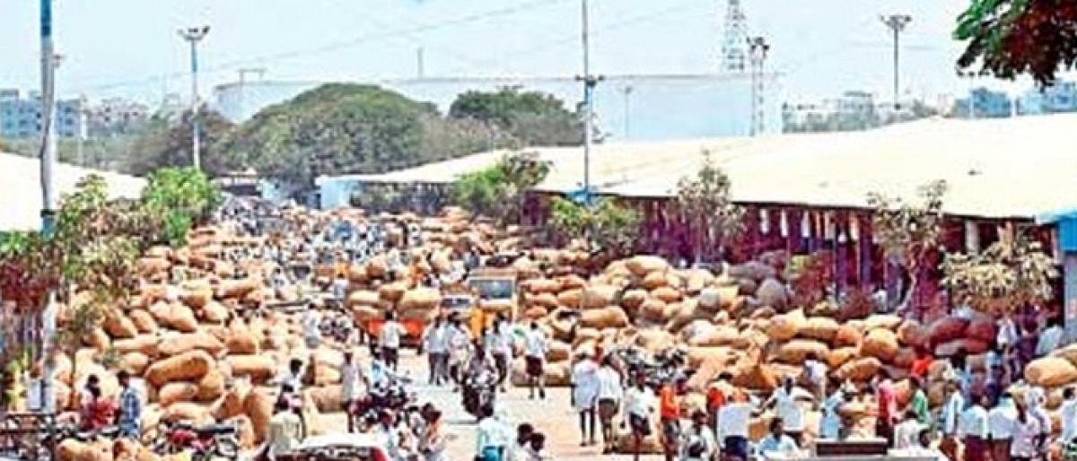 Lobbying on for Parigi agriculture market committee chief post