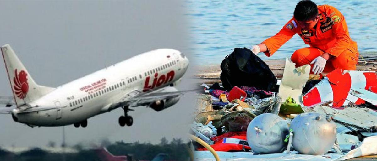 Indonesian plane that crashed lost contact in 13 minutes