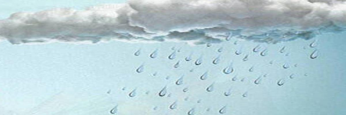 Learn about clouds and rain