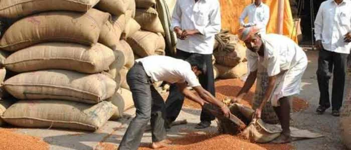 Gadwal creates records in red gram procurement