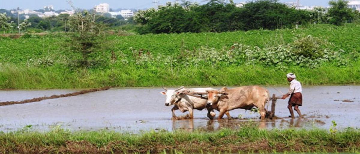 Tenant farmers demand Rythu Bandhu scheme