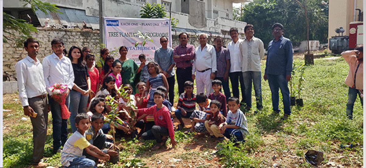 Tree plantation drive held in city