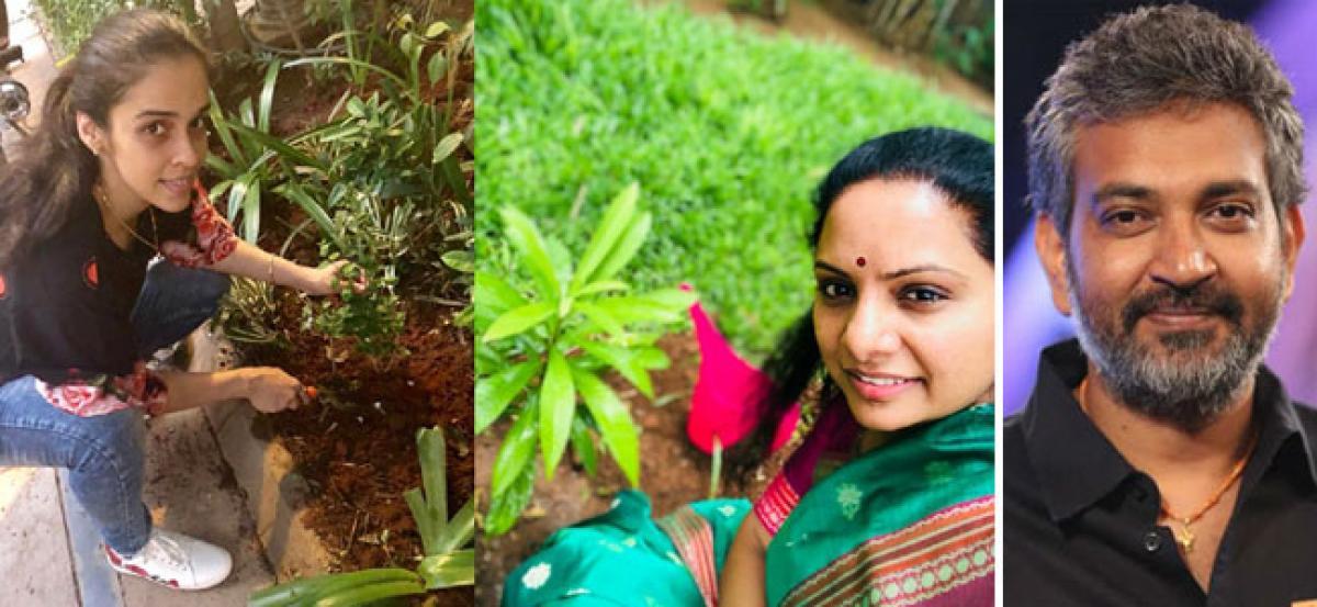Green challenge gains prominence; SS Rajamouli, Saina Nehwal among takers