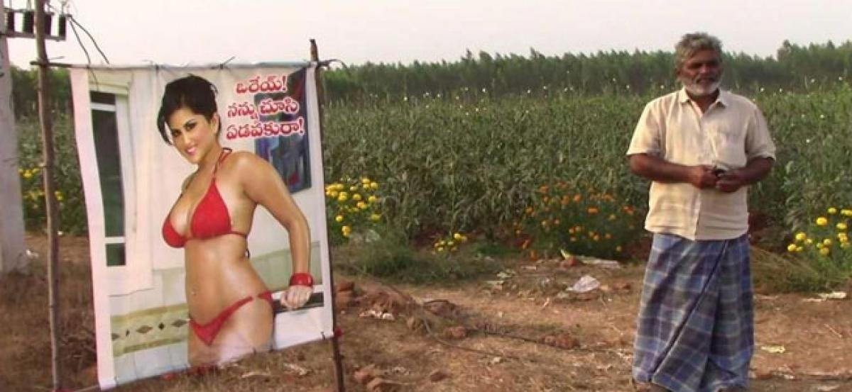 Farmer puts up Sunny Leone posters to save crops